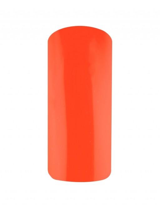 VSP Orange flashy